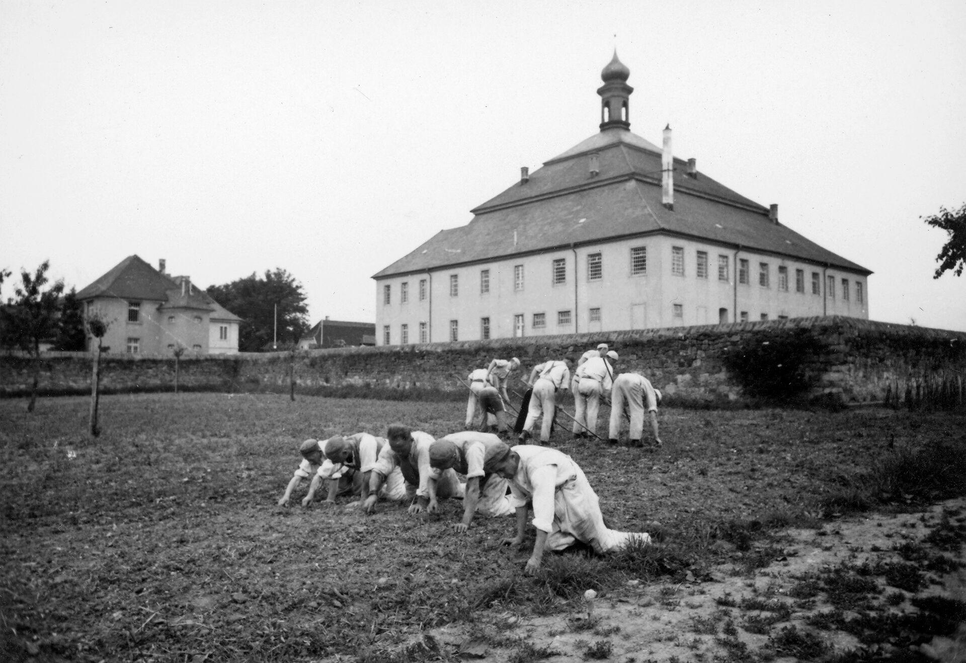 Häftlinge jäten Unkraut im Garten vom Schloss Kislau im Jahr 1944, als dieses als Strafgefängnis genutzt wird